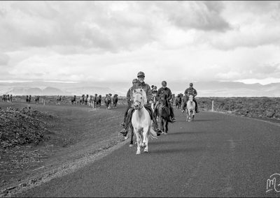 Carnet de voyage : Reportage photo en Iceland sur les chevaux. Photographe freelance en Gironde, Bordeaux.